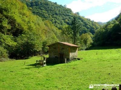 Hayedos Parque Natural de Redes;rutas de senderismo en la pedriza excursiones fin de semana desde ma